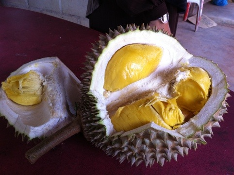 20110727 134403 Wordless Wednesday #10 : Durian Musang King
