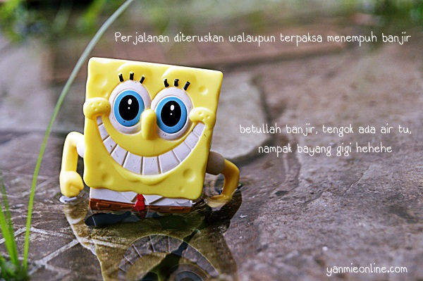 spongebob galaxy s2