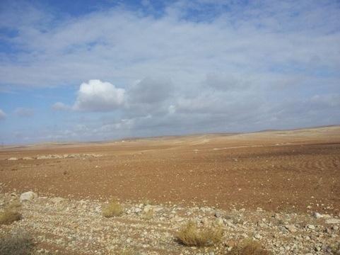kawasan sekitar pohon tempat Rasulullah berteduh