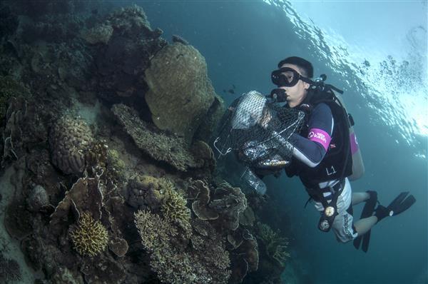 reef rescuers underwater