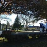 solat fardu di taman Fairlie