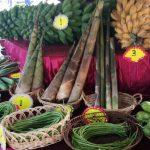 HPPN Perlis hasil tani penduduk tempatan